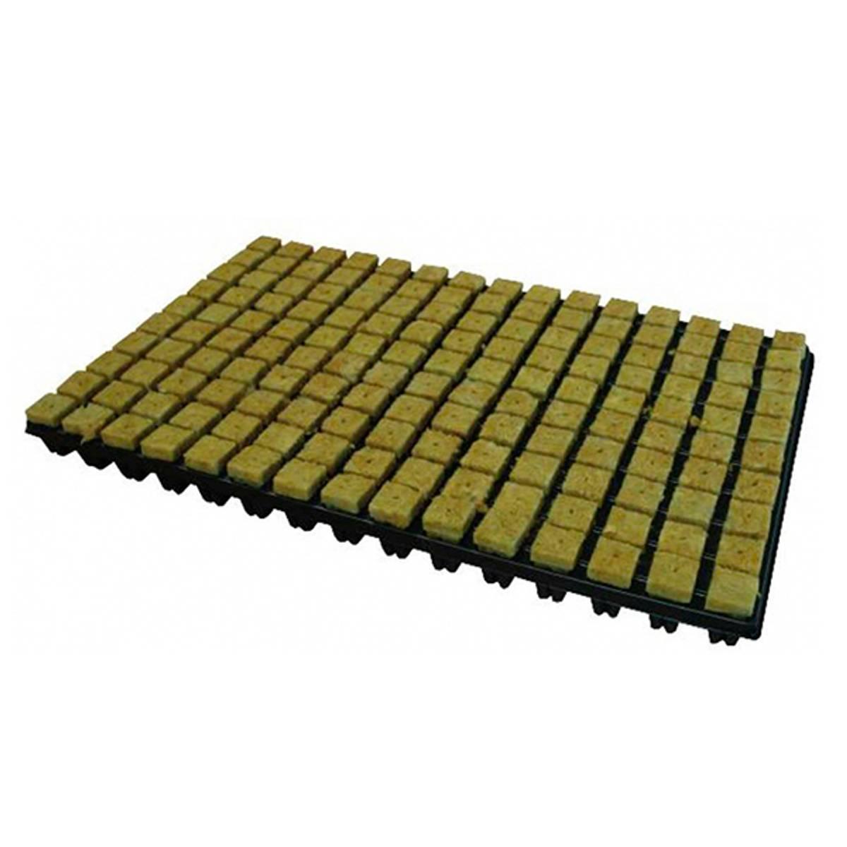 150 såkuber i rockwool med brett